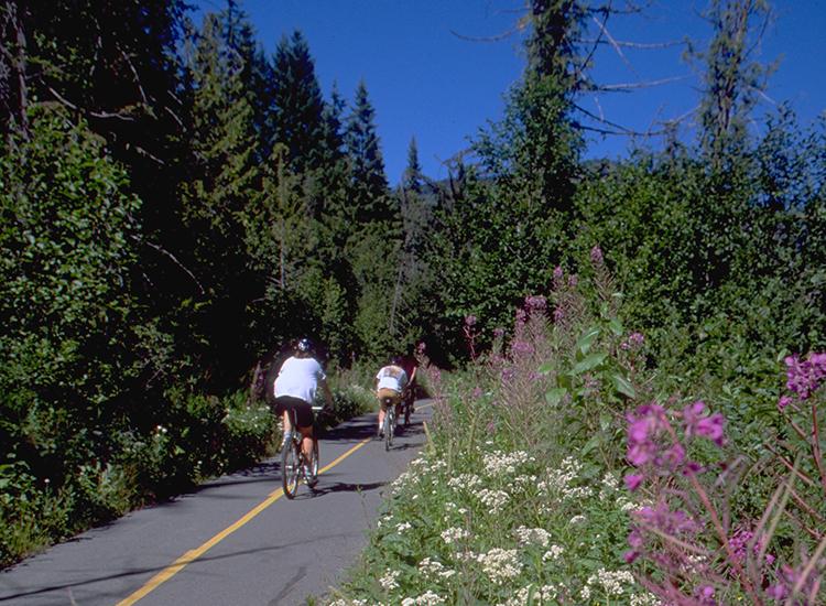 Trail 3 750X550